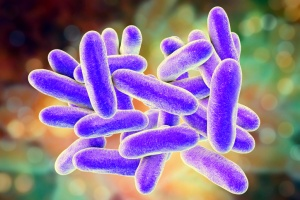 Legionella is a gram-negative bacteria that thrives in freshwater